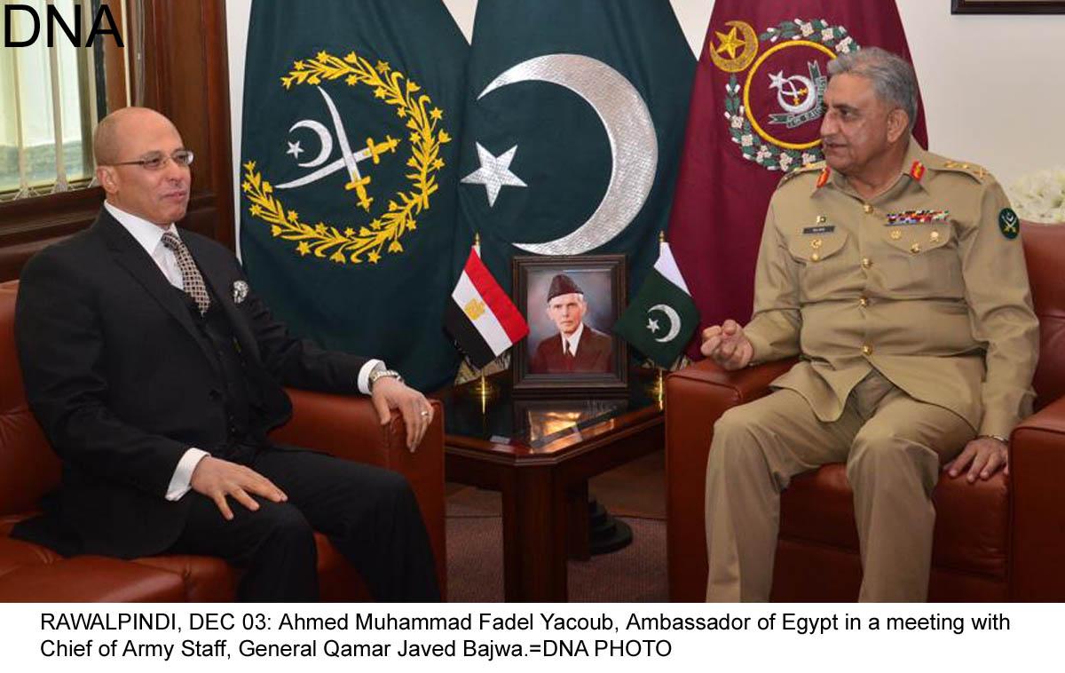 Ambassador of Egypt meets COAS Gen. Qamar Javed Bajwa