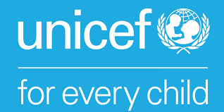 Online violence against children on the rise in Pakistan: UNICEF